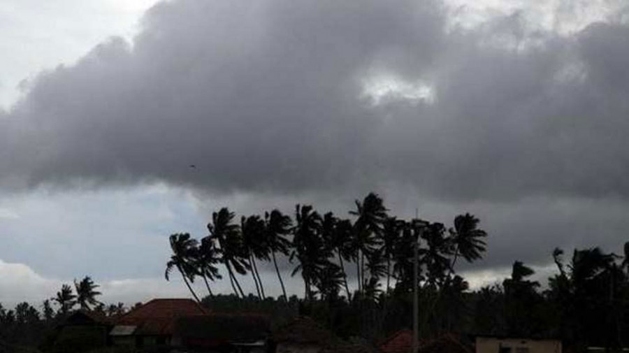 India likely to get average monsoon rainfall in 2019, says IMD
