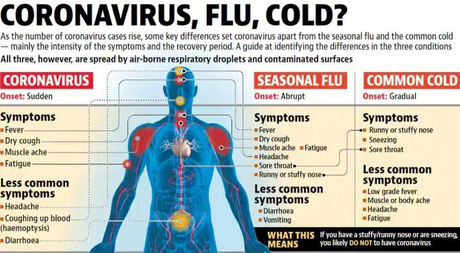 How coronavirus is different from seasonal flu and common cold