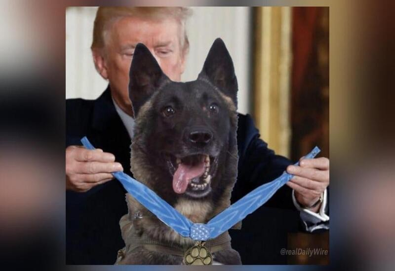 Trump shares photoshopped pic of him honouring dog who chased Baghdadi