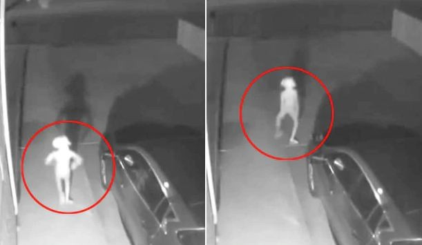 Security Camera Captures Elf-Like Creature. 30 Million Views For Bizarre Video