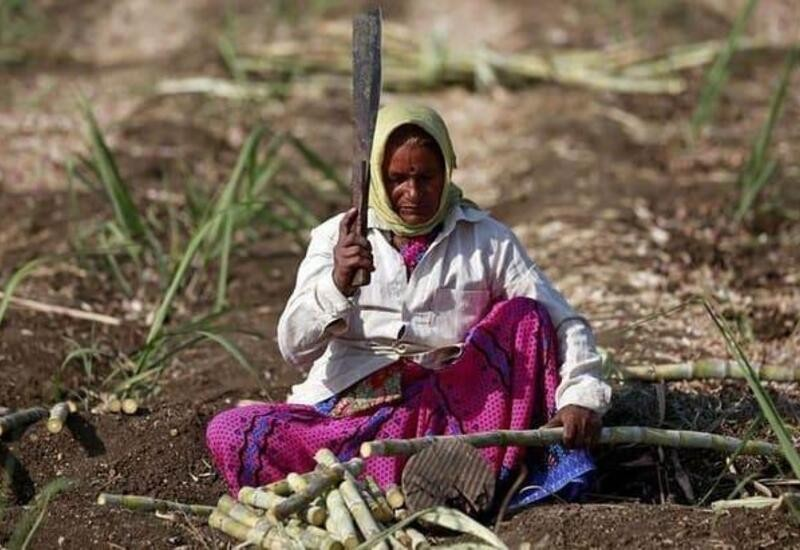 Maha team to study Rajasthan farm loan waiver scheme: Official