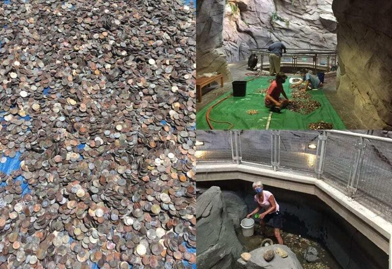 100 gallons of coins recovered from artificial waterfall in the US, pics surface