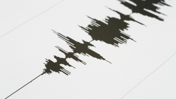Strong quake recorded in Indonesia's Banda Sea, no tsunami