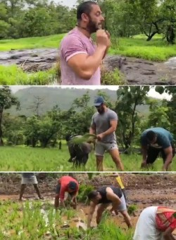 ​It's Paddy Plantation Time For Salman Khan
