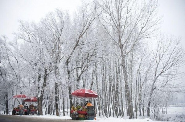 Jammu & Kashmir, Himachal Pradesh On High Alert As Heavy Snowfall Expected In Next 2 Days