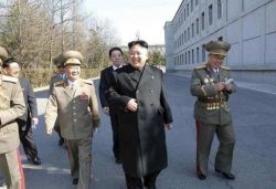 North Korea has not reported 1 positive coronavirus case: WHO