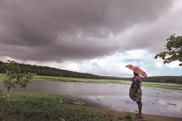 India likely to get normal monsoon rains this year: Skymet