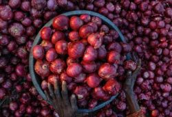 Onion prices surge up to ₹200 per kg in Bengaluru