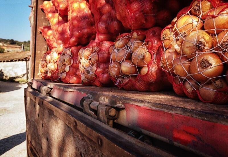 Man takes onions worth ₹2.32 lakh in truck from Mumbai to beat lockdown to reach UP