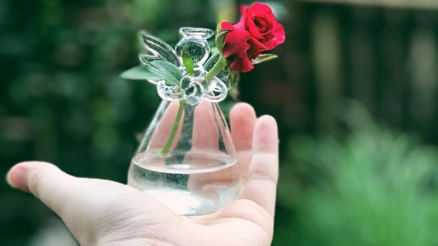 A rose by any other name: Why Indians shy away from the great rose perfumes