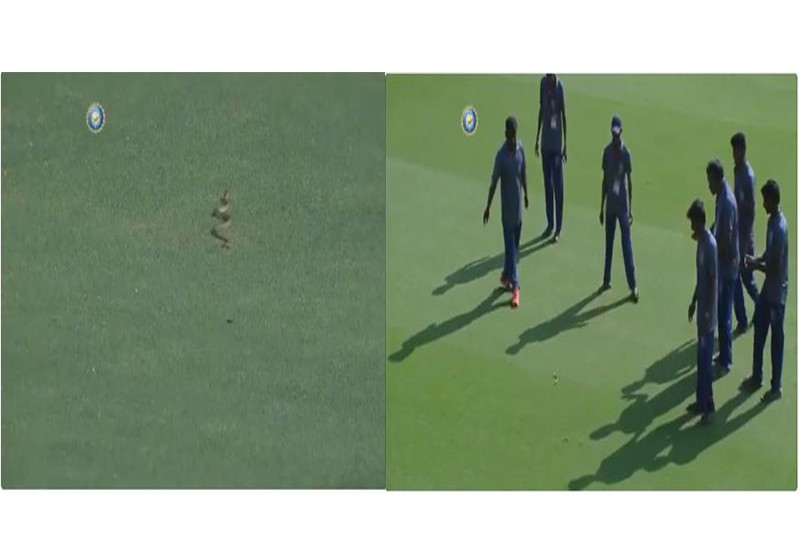 Snake came into the field during Ranji Trophy Group match between Andhra and Vidarbha