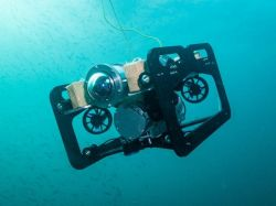 Engineering students develop free-swimming Autonomous Underwater Vehicle