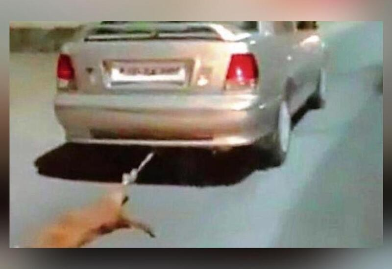 Udaipur man drags dog after tying it behind his car, booked
